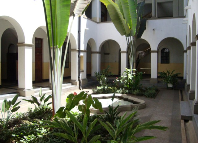 Planters in the courtyard