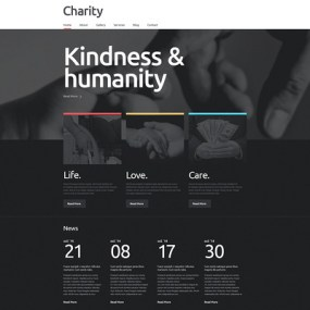 Charity Responsive WordPress Theme (charity WordPress theme) Item Picture