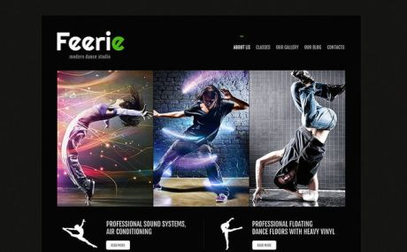 Dance Studio Responsive WordPress Theme (dance school WordPress theme) Screenshot