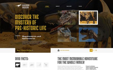 Discovering the Unknown WordPress Theme (museum WordPress theme) Screenshot