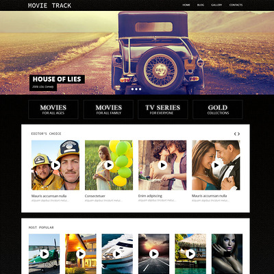 Online Movies WordPress Theme (WordPress theme for movie websites) Item Picture