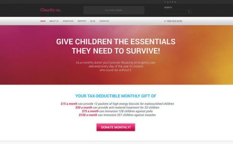 Simple Charity WordPress Theme (charity WordPress theme) Screenshot