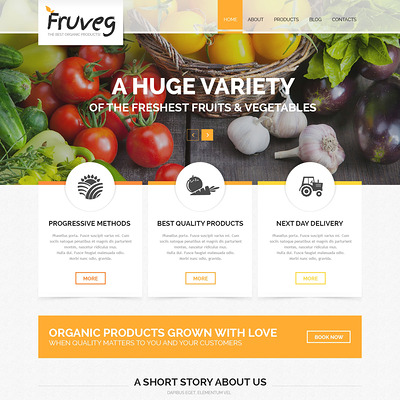 The Best Organic Products Joomla Template (Joomla theme for agriculture and farms) Item Picture