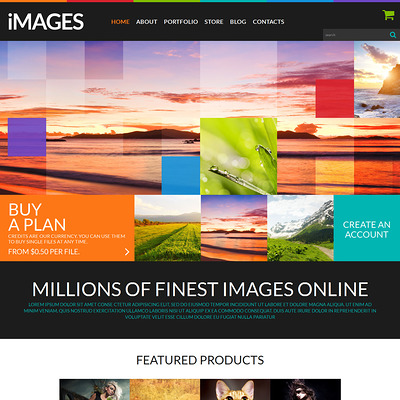 Stock Images WooCommerce Theme (WooCommerce theme for selling stock photography) Item Picture