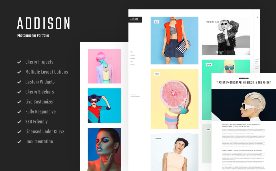 Addison (WordPress theme for photographers) Item Picture