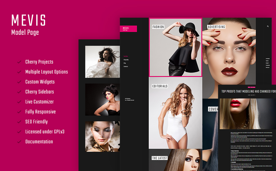 Mevis (WordPress theme for photographers) Item Picture