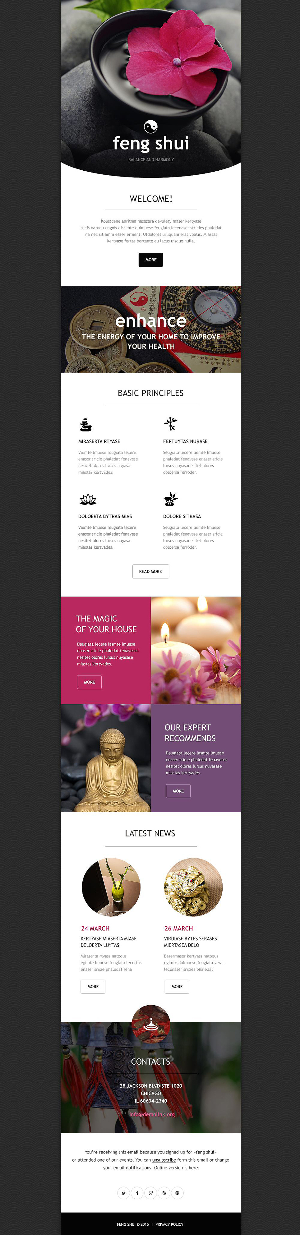 Feng Shui (responsive newsletter template) Item Picture