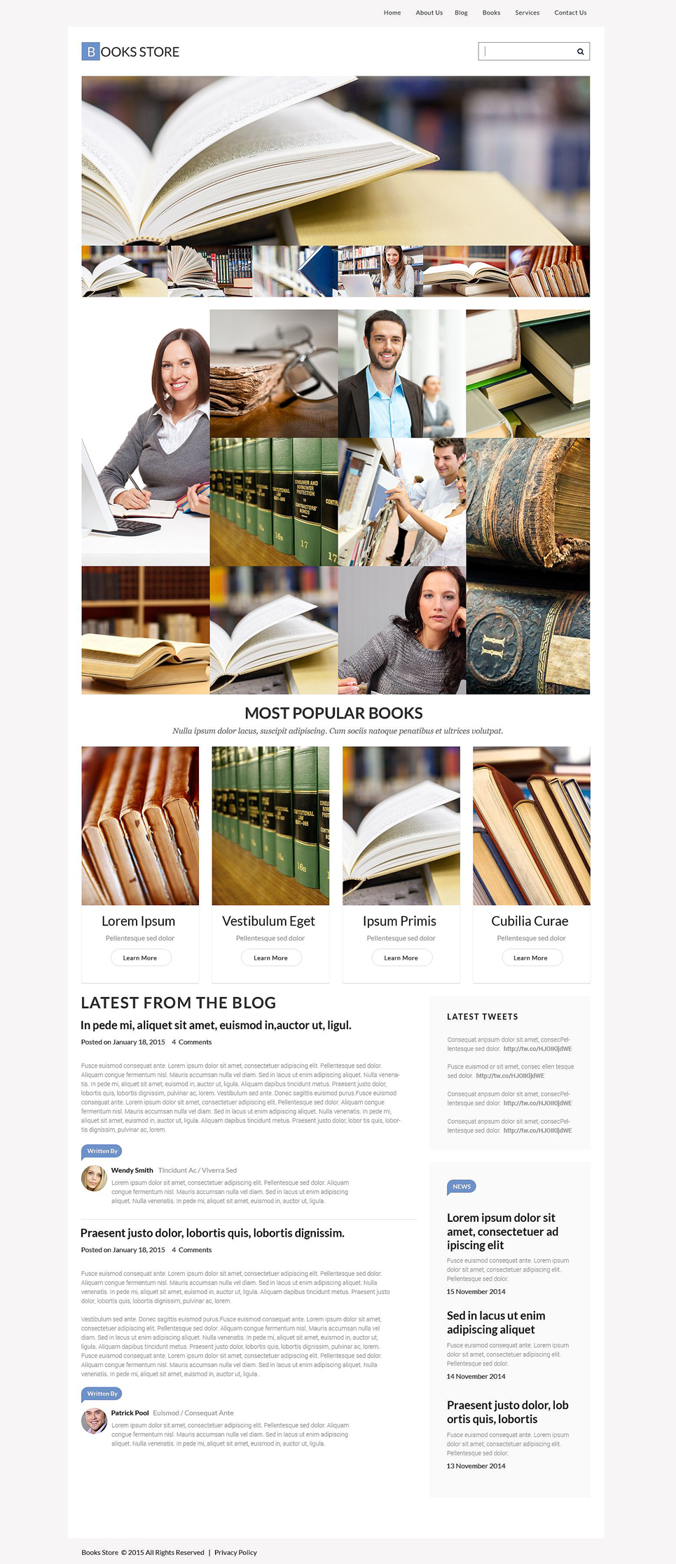 Book Store Responsive WordPress Theme (WordPress template) Item Picture