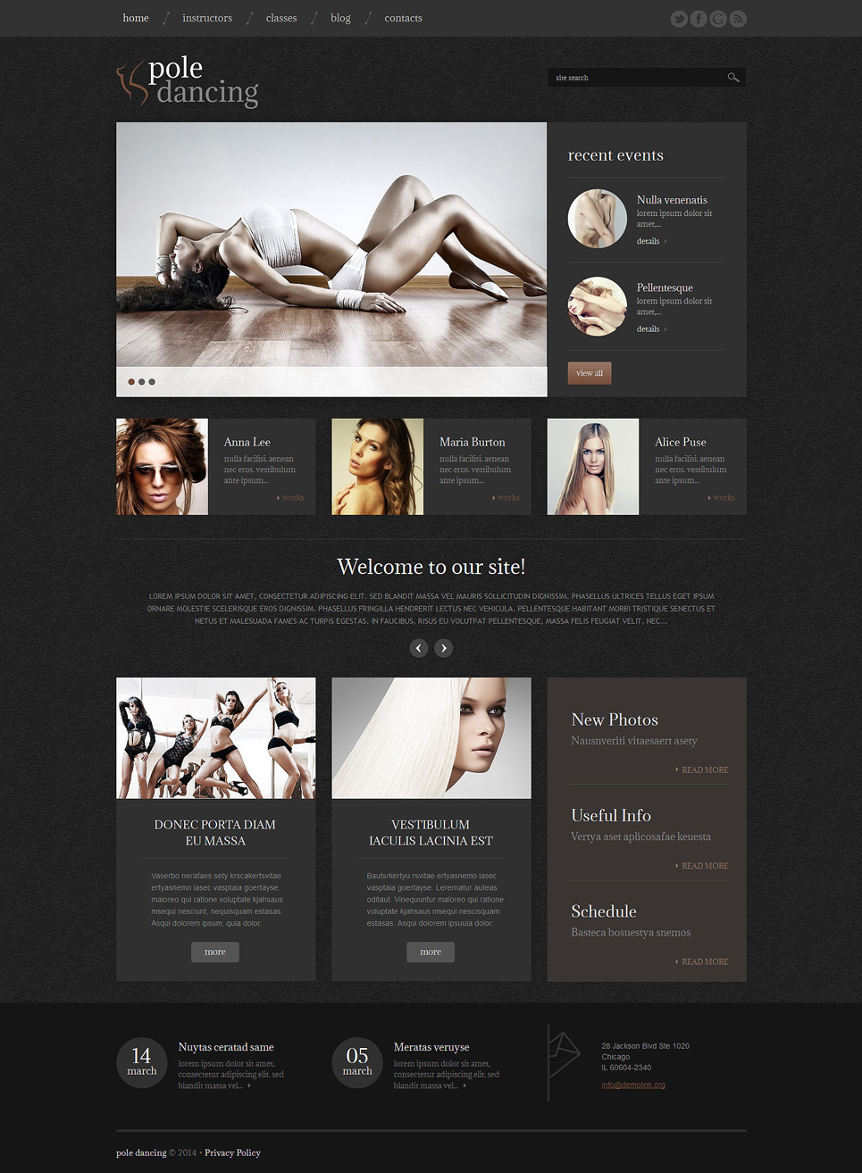 Pole Dancing (theme for your WordPress site) Item Picture