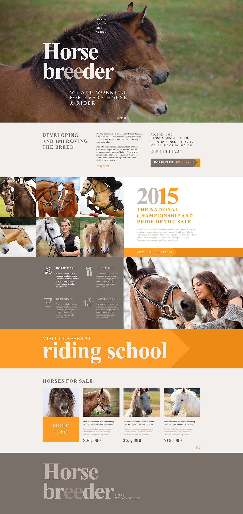 Horse Breeder (theme for WordPress) Item Picture