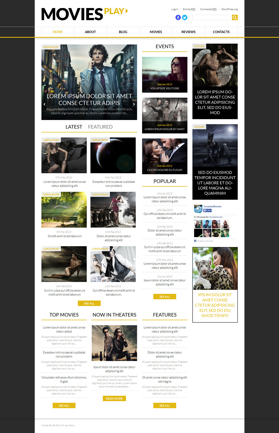 Press Play (theme for your WordPress site) Item Picture