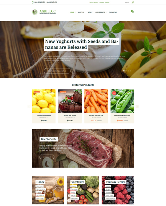 woocommerce themes for selling foods