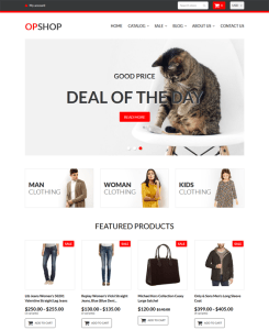 best wholesale store shopify themes feature