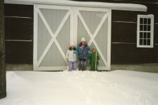 Barn went thru Winter with no siding - didn't bother these guys!