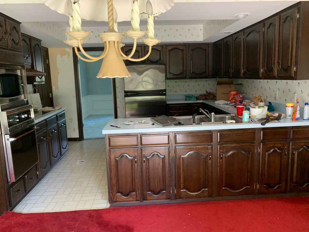 The old kitchen with red carpeting and an inefficient layout.