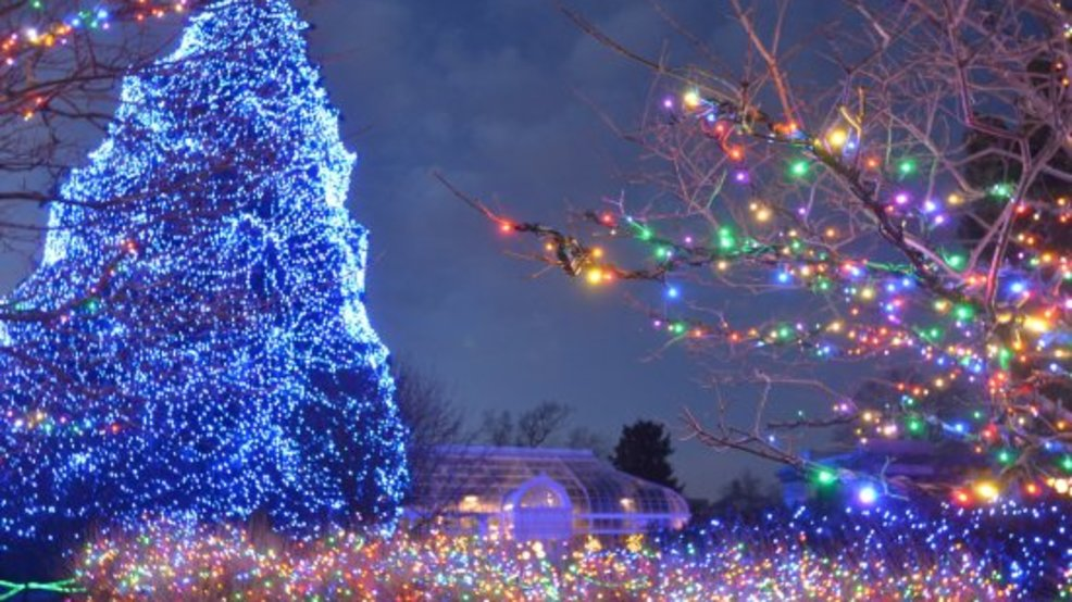 The Toledo Zoo Lights Before Christmas