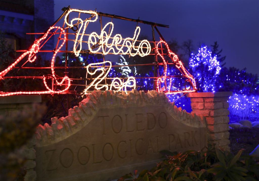 Visit the Lights Before Christmas at the Zoo with your kids | Building Bluebird