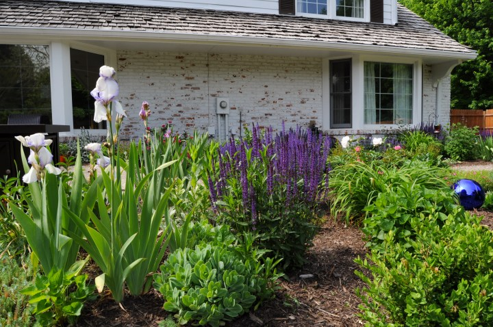 Creating your own English garden with these simple elements to create a beautiful cottage garden design | Building Bluebird #cottagecre #perennials #romanticgarden