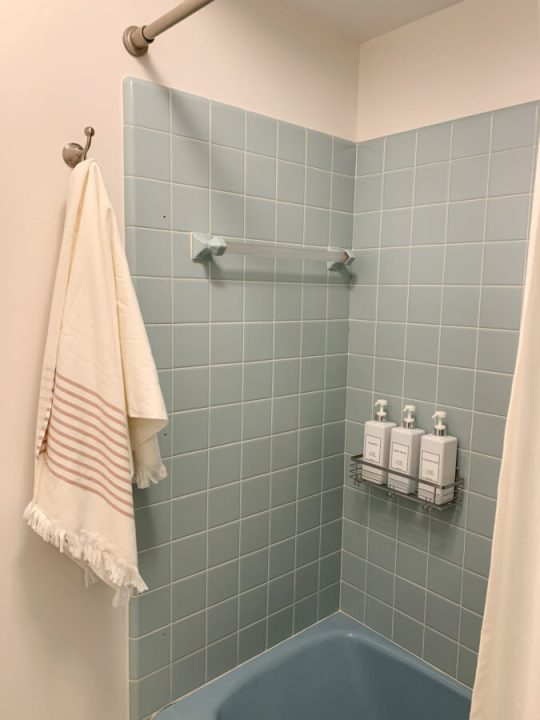 Budget-friendly master bathroom makeover | Building Bluebird #retro #bathroommakeover