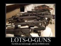 bth_lots-o-guns_zps7f4fb78f