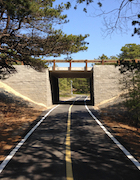 CCNS-PL Bicycle Trail.jpg