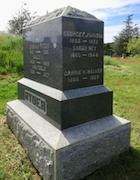 Cemetery 24 Johnson Sarah PHC&M 89.jpg
