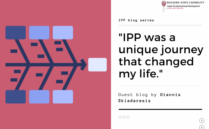 'IPP helped my transition from the private sector to the public sector'