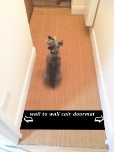 hallway door mat v2