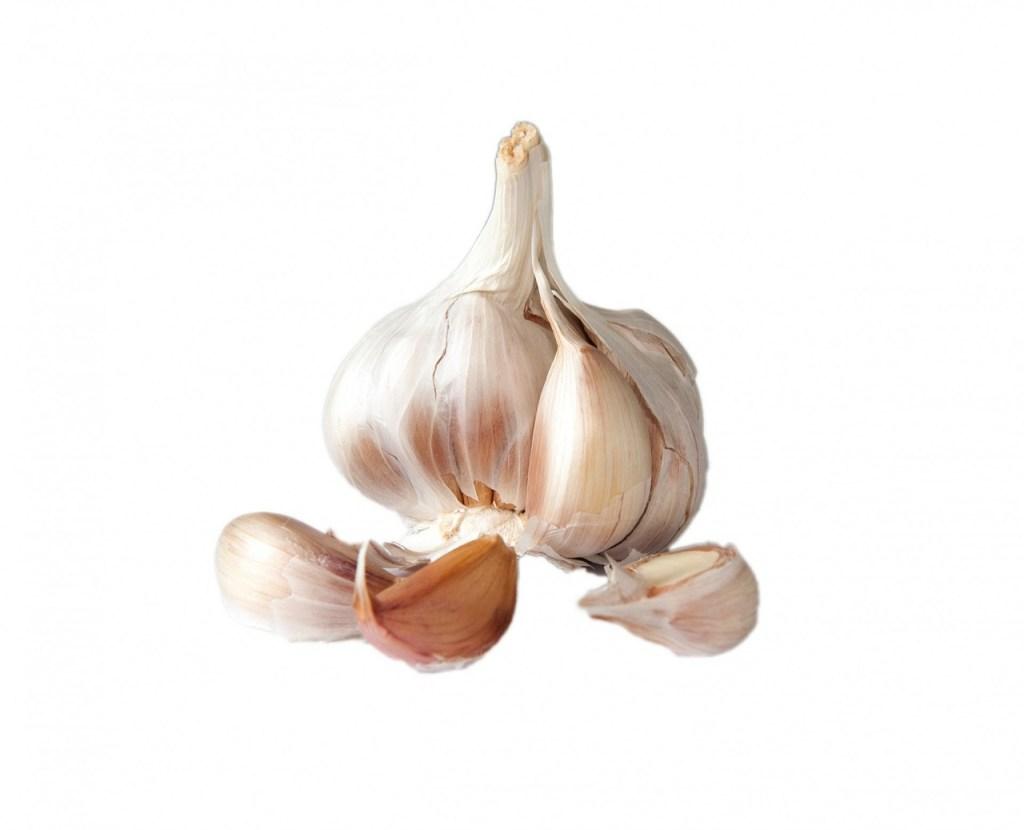 Built By Plants - Garlic