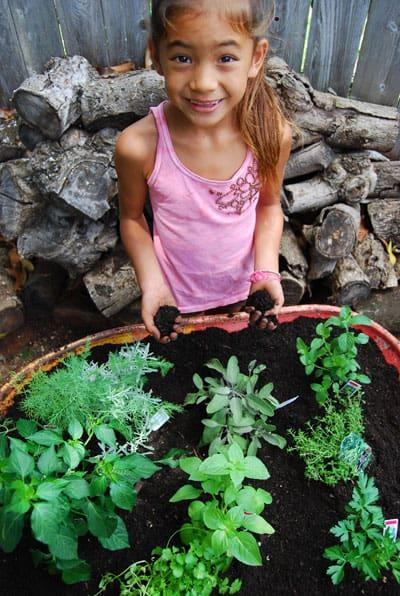 herb-garden-fun