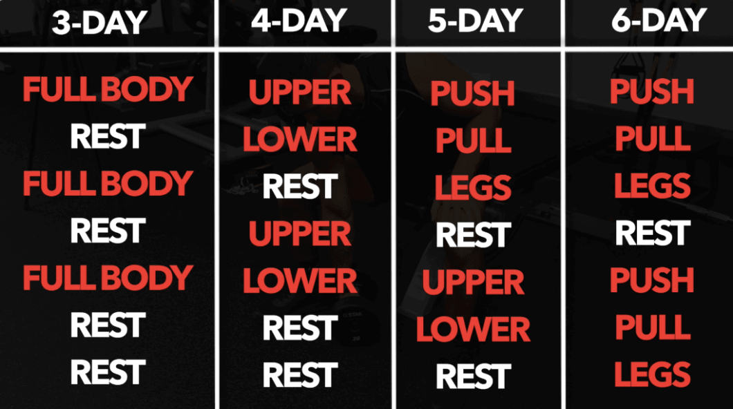5 Day Push Pull Workout For Mass | Kayaworkout co