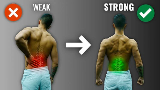 the best lower back exercises for low back pain