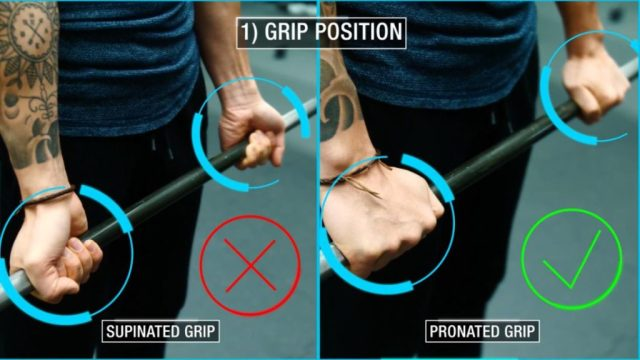 Forearm curls pronated grip