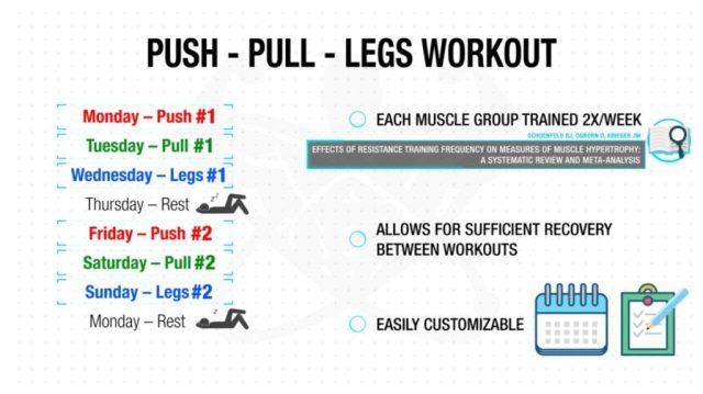 Push pull legs workout advantages