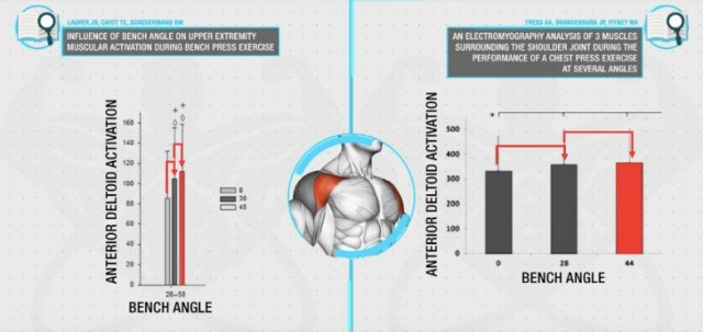 push workout activation of muscles