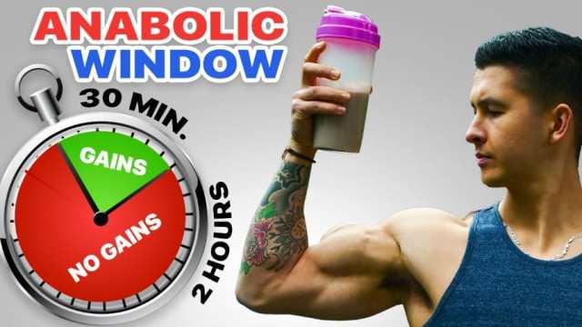 anabolic window thumbnail