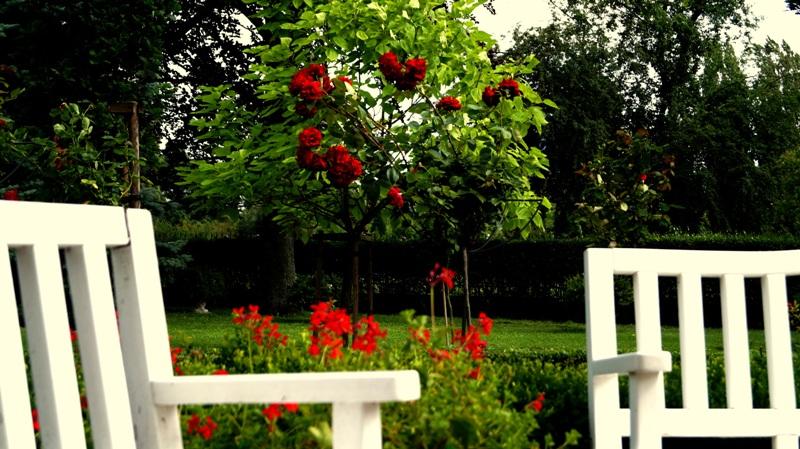 Willa Edwarda Herbsta - ławeczki w ogrodzie