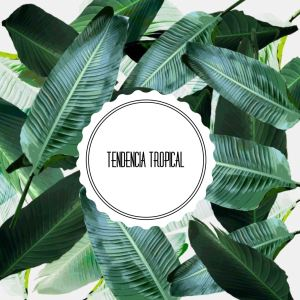 Tendencias: Decorar con Papel Tapiz Tropical