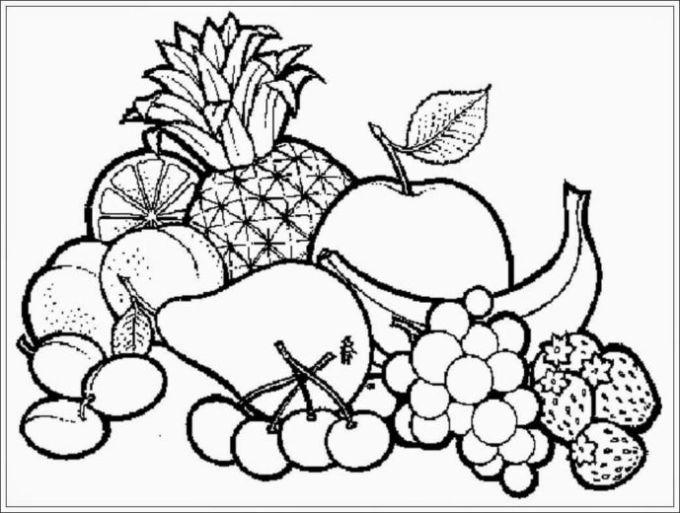 gambar sketsa buah