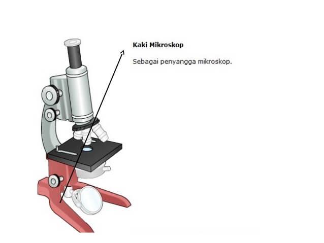 bagian bagian mikroskop kaki dan fungsinya