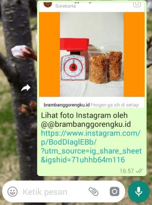 tampilan link postingan instagram di chat wa