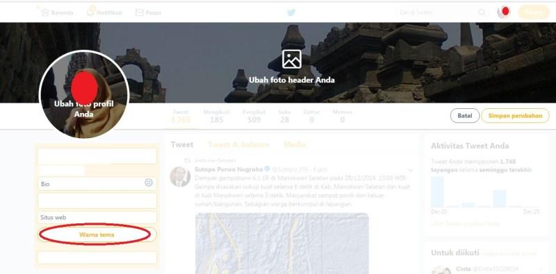 Tampilan pengaturan untuk mengubah warna tema Twitter