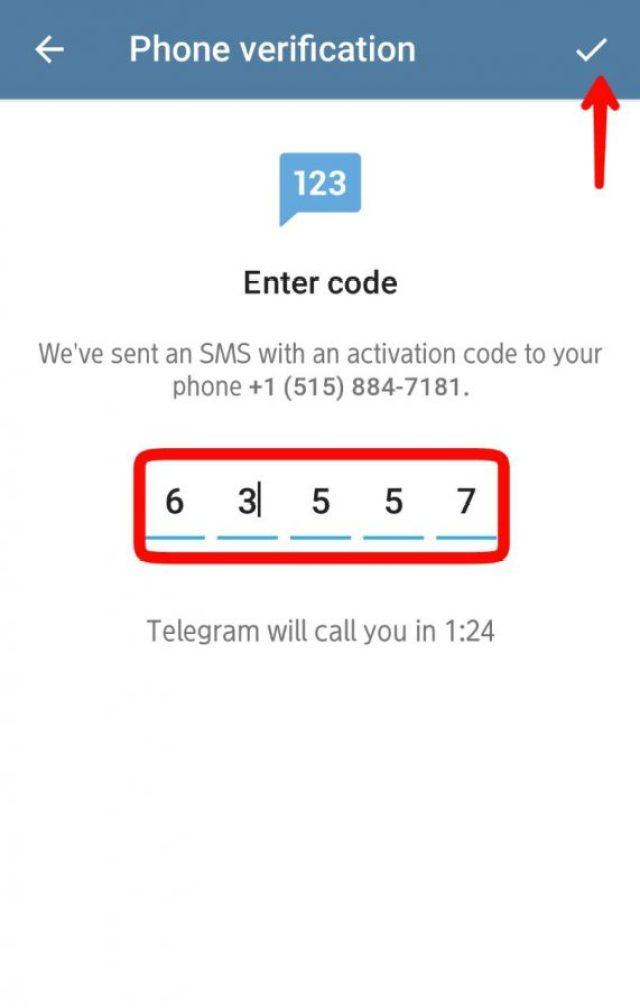 Paste kode verifikasi tersebut di laman telegram
