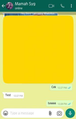 Contoh chat di whatsapp aku