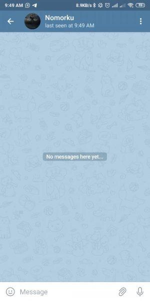 kirim pesan tanpa save nomor berhasil