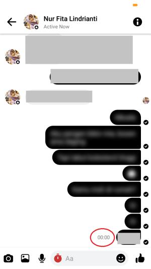 pesan akan terhapus otomatis