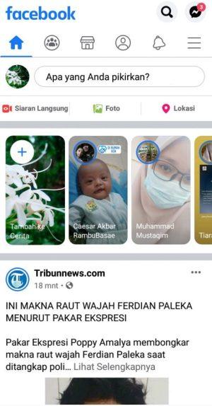 Halaman beranda Facebook Regular