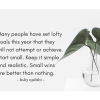 Small Wins Are Better Than Nothing.