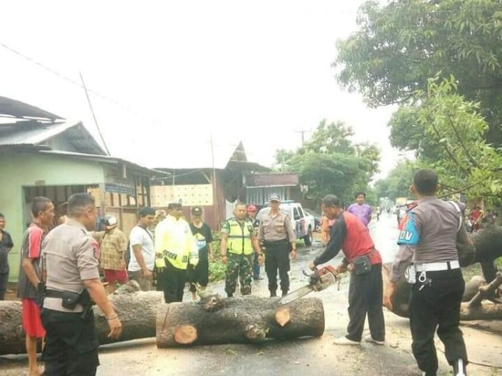 TNI-Polri Majalengka, Atasi dan Evakuasi Pohon Tumbang