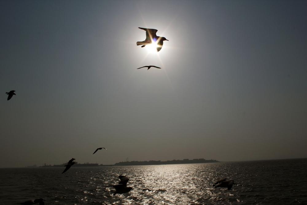 India Mumbai 42